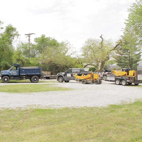 Two dump trucks, two stump grinders, a truck, and a trailer sit on an clear lot