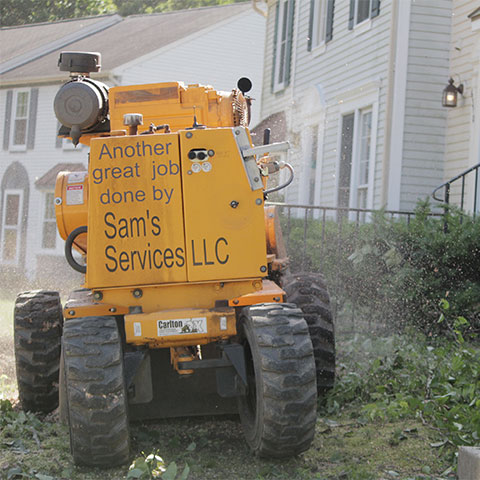The back side of a yellow stump grinder that is grinding a stump in front of a townhouse