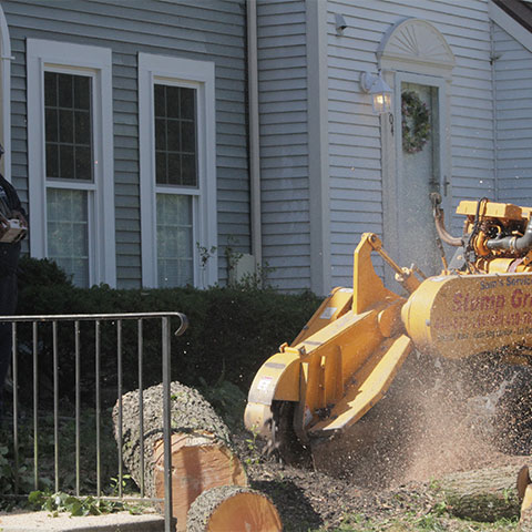 The front of a stump grinder grinding down a stump below ground level in front a home