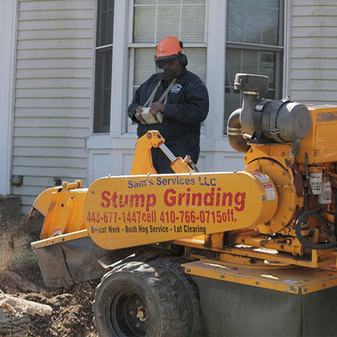 Sam Crowder stands in the background, behind the stump grinder he is operating to remove a stump from a residence in Elkridge, MD