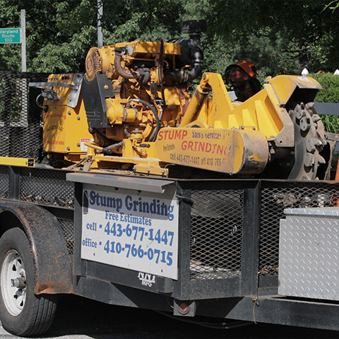 A yellow stump grinder sits on a Sam's Services trailer waiting to be unloaded