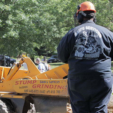Sam's Services owner, Sam Crowder, driving a remote controlled stump grinder through a residential area towards a stump he is going to remove